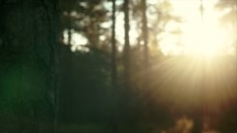 Sun flaring in camera lens