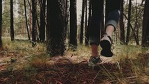 Feet walking through a forest of trees.