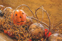 fall autumn harvest pumpkin party decorations