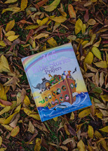 Children's Bible in fall leaves