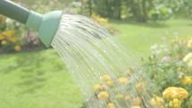 Watering can watering flowers themes of retirement gardening hobbies
