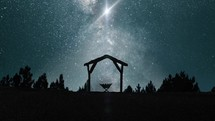 silhouette of a manger under starlight