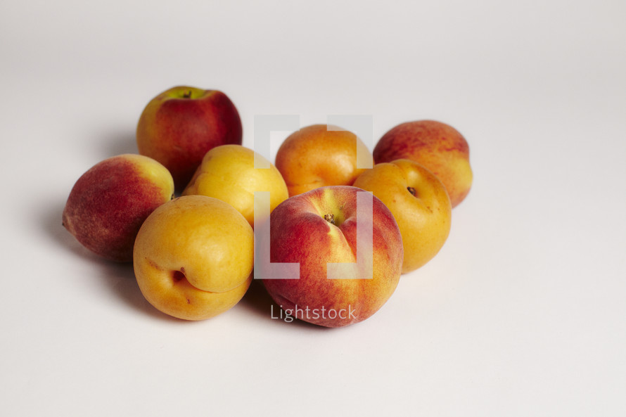 A grouping of peaches and apricots on seamless white