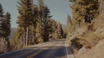 Driving on a road through the forest