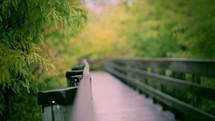 rain falling on a bridge
