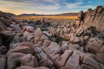 sunrise landscape from Hidden Valley Trail in Joshua Tree National Park