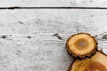 cut tree slices