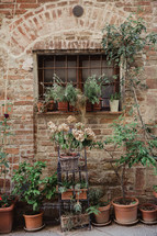 potted plants on a veranda in Italy