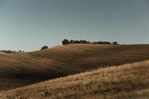 freshly cut landscape for hay