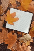 brown fall leaves and open notebook