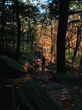 a person hiking in a fall forest