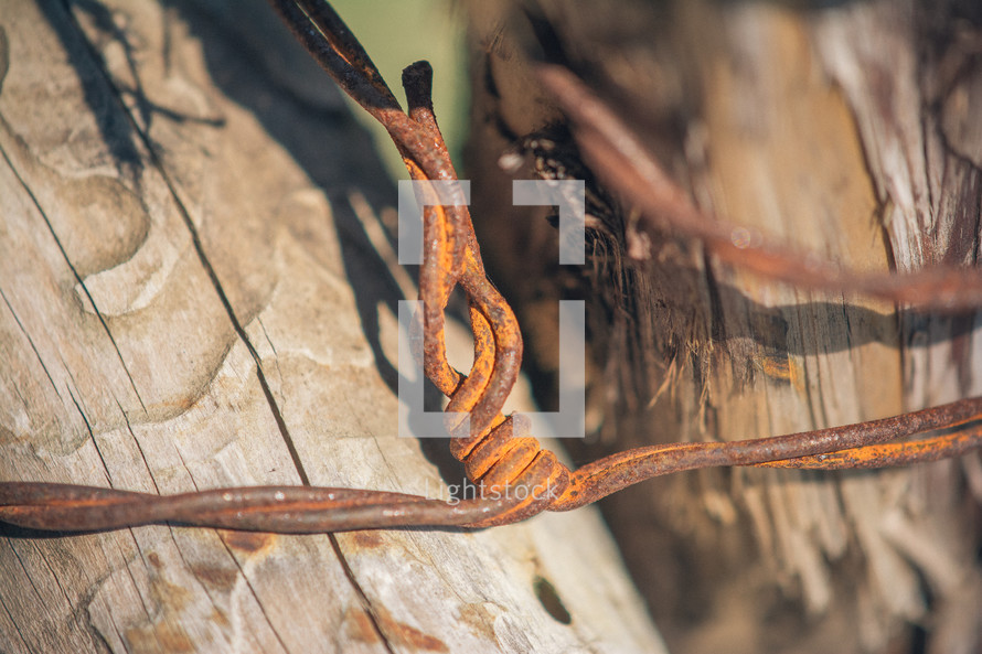 Rusty barbed wire around a wooden fence post.
