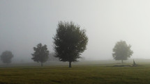 A meadow lined with trees surrounded by early morning fog in a rural country setting.