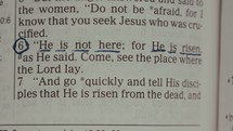 "Page turns and reveals scripture verse ""He is not here, for he is risen""."