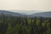 a horizon line of forest and mountains through smoky sky