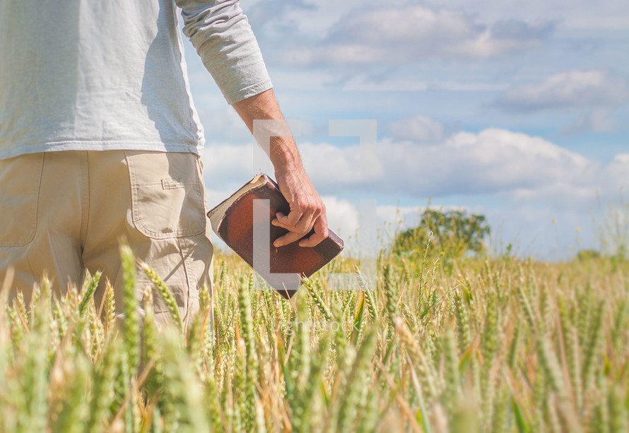 man holding a Bible in a wheat field