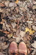 boots standing on fall leaves