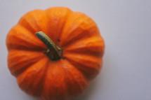 Top of a miniature pumpkin.