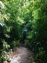 Man walking on a path through a tropical forest.