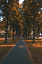 a fall path in a park