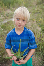 a boy child holding a potted aloe plant