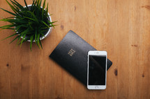 house plant, Bible, and iPhone