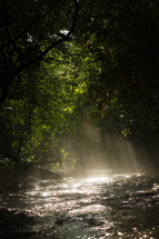 rays of sunlight on a water in a stream
