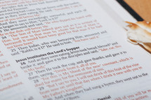 Lord's Supper and open Bible
