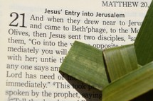 Palm Sunday scripture, Matthew 21: 1-11, Jesus' Entry into Jerusalem