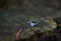 Diamond ring on a tree stump.