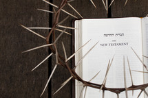 Crown of Thorns on Top of a new testament in Hebrew and English