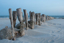 old pier pilings in the sand