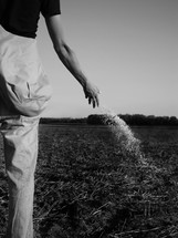 farmer tossing seed