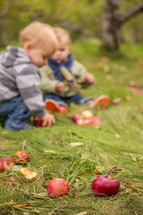 toddlers playing with apples in the grass