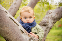 toddler boy in a scarf in a tree
