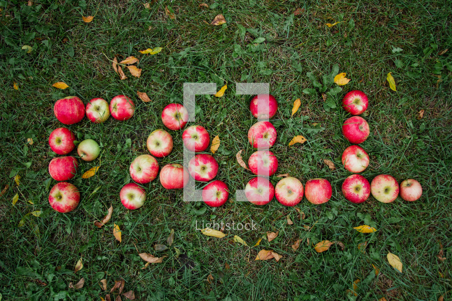 word fall in apples on the ground