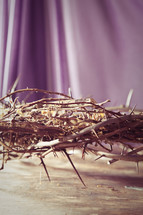 Crown of thorns with purple drape.