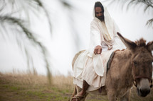 Jesus and a donkey