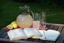 Bible study in the summertime – outside in the garden with fresh self made lemonade.