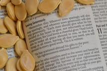 pumpkin seeds on the pages of a Bible
