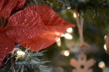 poinsettia ornement on a Christmas tree