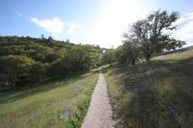 Dirt road through field