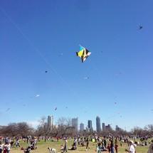 flying kites in central park