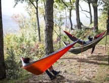 hammocks tided to trees in a forest