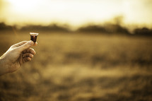 outside communion - hand holding a communion wine cup