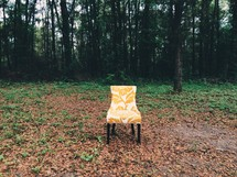 chair alone outdoors in fall leaves