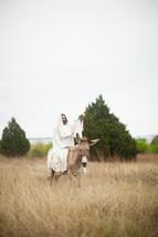 Jesus and a donkey
