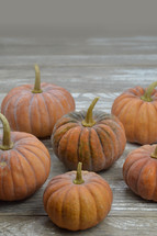 Musque de Provence pumpkins on raw gray wood boards