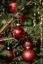 The Nativity story written in golden letters on red Christmas ornament bulbs.  nativity, nativity story, Christmas story, Christmas, X-mas, Christmas ball,  Christmas tree ball,  Christmas glitter ball, bauble, balls, ball, baubles, sphere, spheres, bulb, bulbs, ornament, ornaments, decoration, deco, decorations, birth, born, Luke, Matthew, New Testament,  fir, branch, twig, golden, gold, red, green, write, written, writing, story, bible, scripture, word, God's word, holy book, Bethlehem, manger, Mary, Joseph, Jesus, birthday,  fir branch, fir-bough, read, reading, pine, tree, advent, celebrate, celebrating, celebration, holidays, tradition, traditional, letter, letters, bright, shining, shine, tree, Christmas tree, hanging, lametta, tinsel