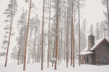 snow and a log cabin